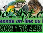 zoo24-logo